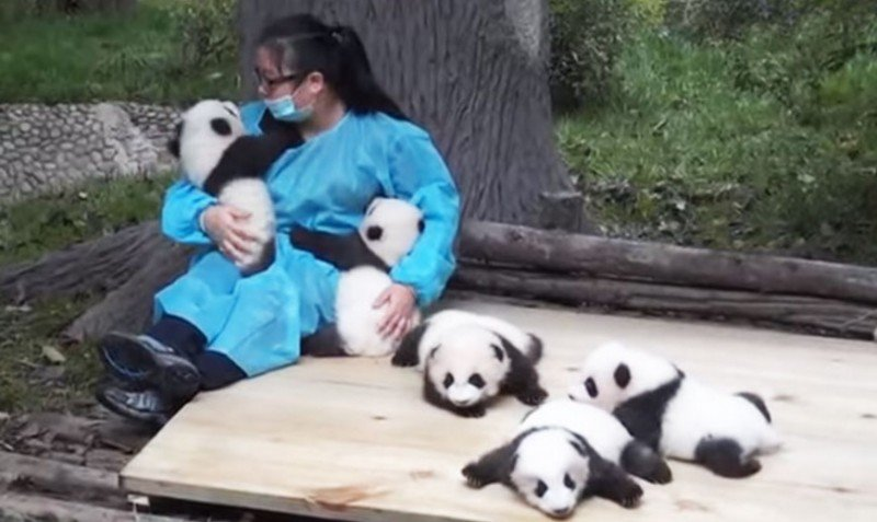 This is a job? In China, it is indeed.