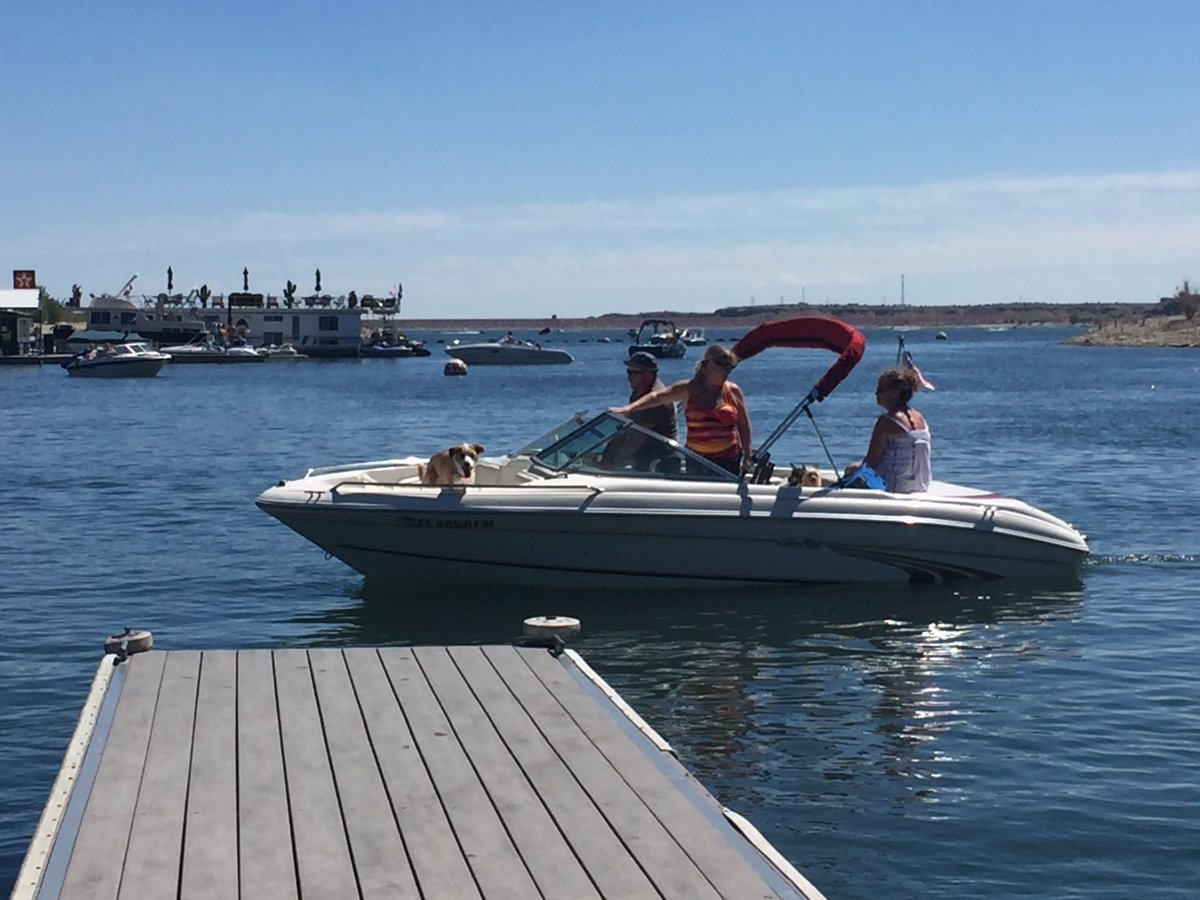 Families and pets celebrate Labor Day at Lake Pueblo State Park.
