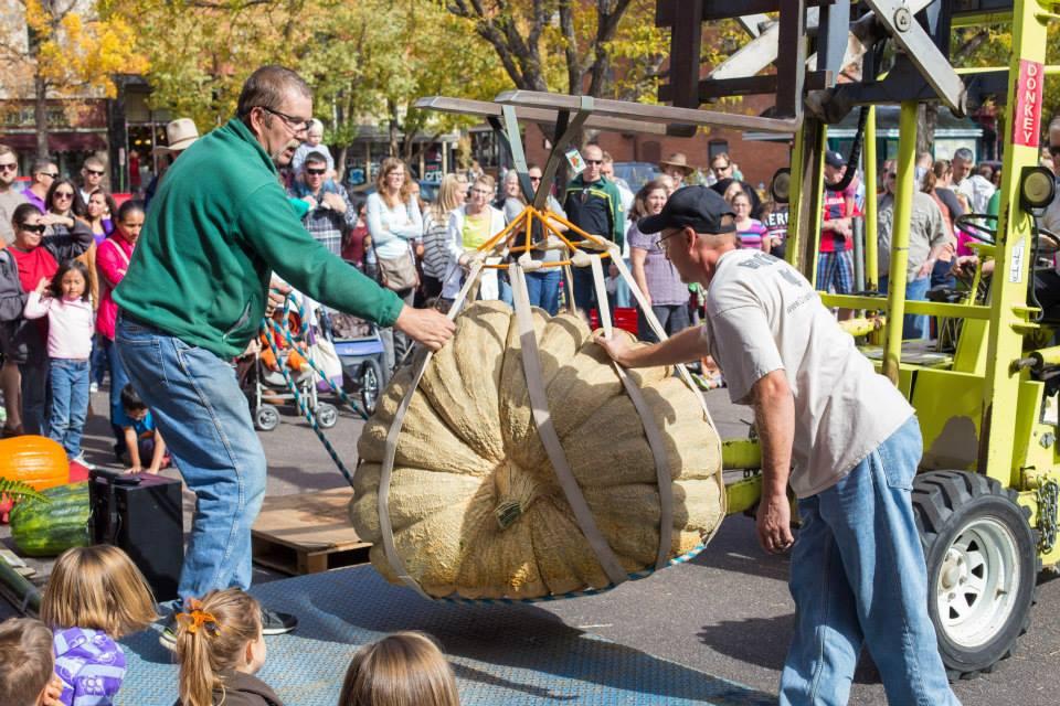 2014 Giant Pumpkin Fest