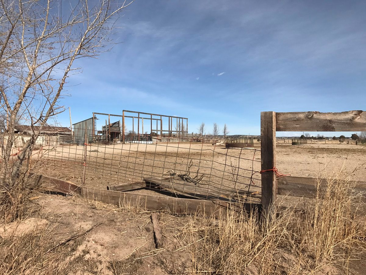 Penny Gingerich's property where 63 horses were seized on January 19. (KOAA)