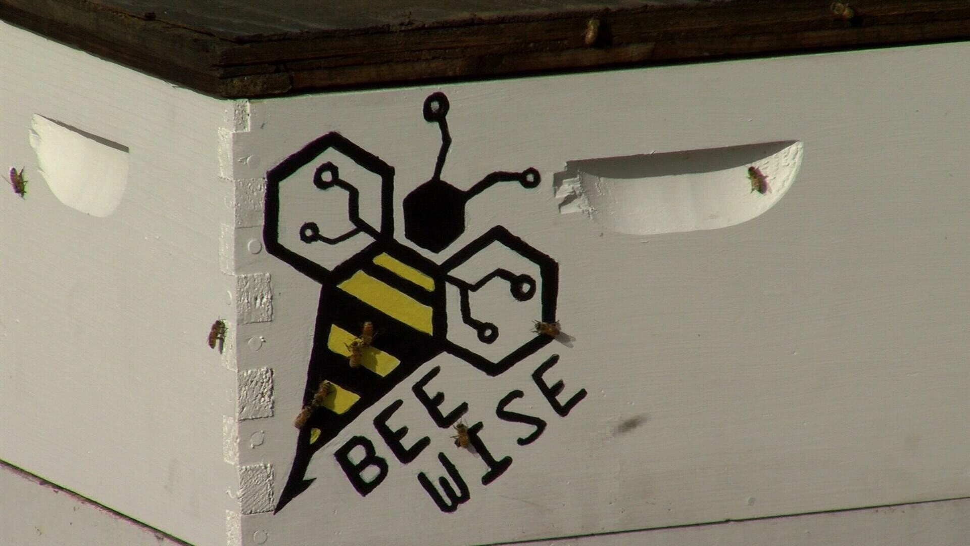 Smart hive at Pueblo Zoo