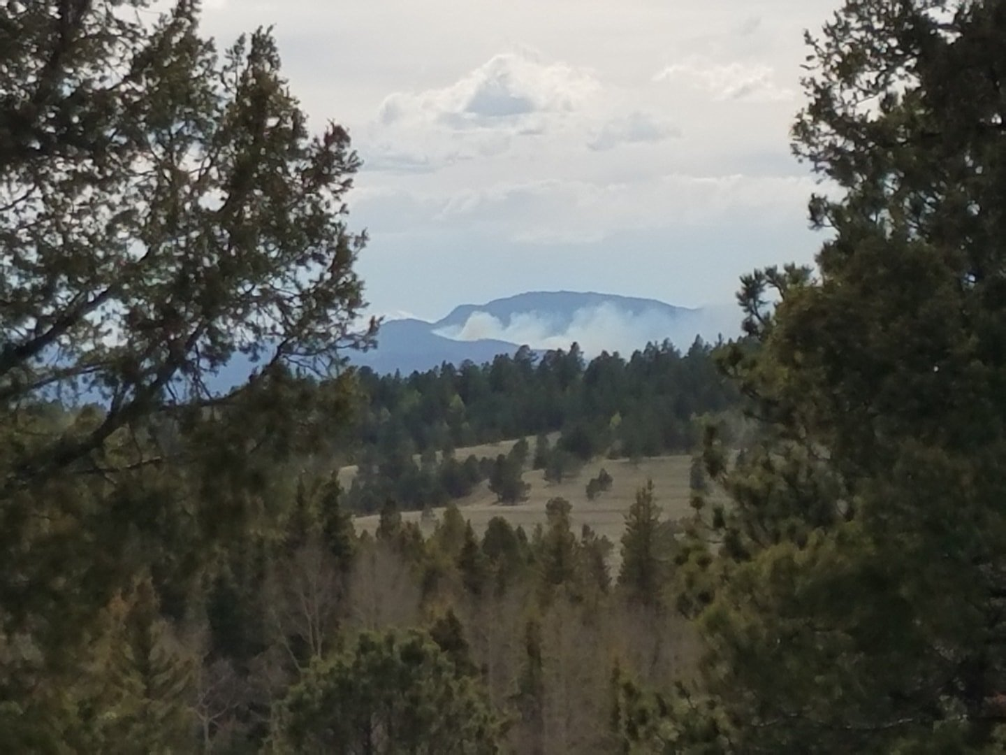 Puma Fire burning in Park County