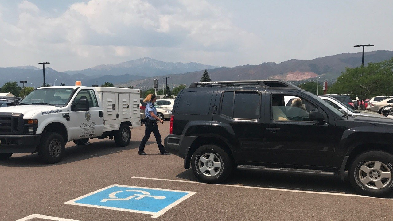 A dog was left in a hot SUV at Academy and Briargate. (KOAA)