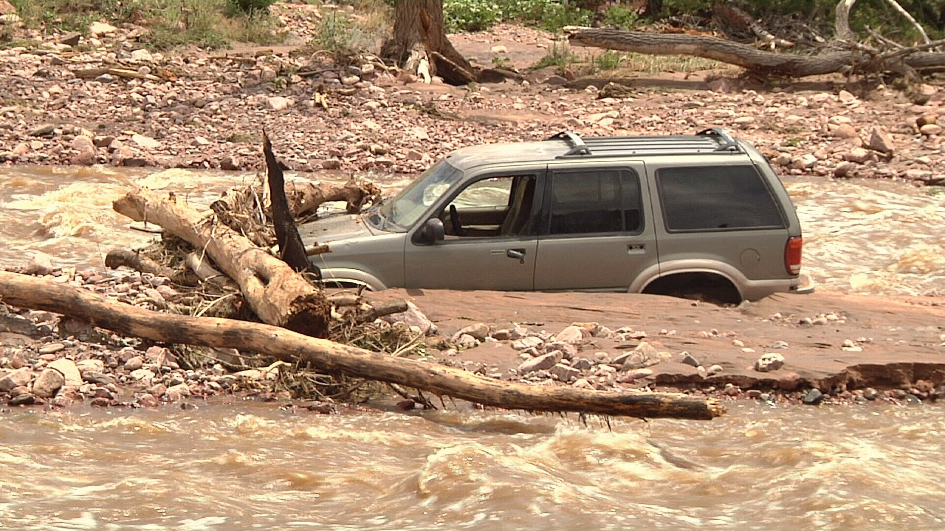 Man and his dog rescued during flash flood