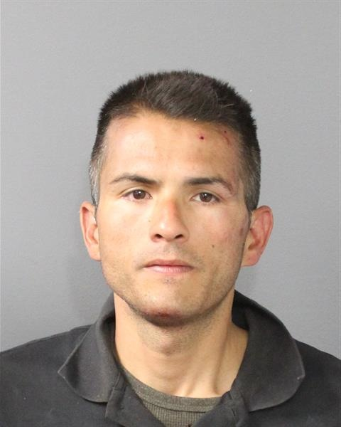 Mario J. Lopez, 35, was arrested for second-degree assault on a peace officer, first-degree motor vehicle theft, felony theft, felony vehicular eluding, criminal mischief, resisting arrest and miscellaneous driving charges.