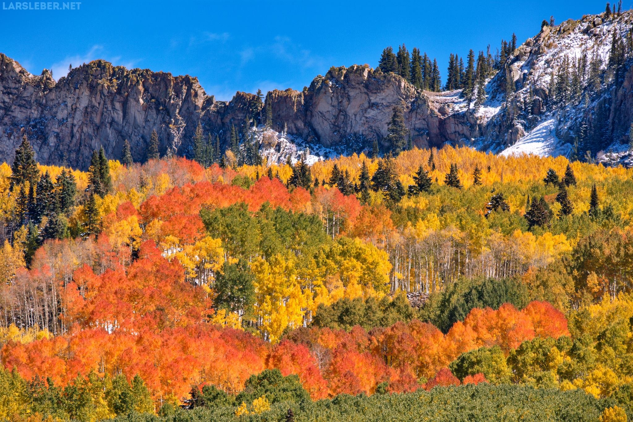 Fall Colors in Kebler Pass