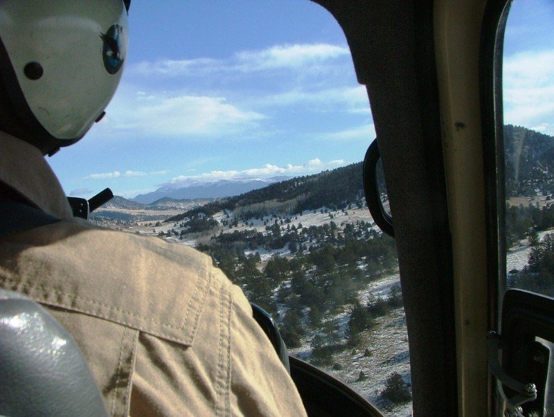 Biologists will start low-altitude helicopter flights to count animal populations in December.