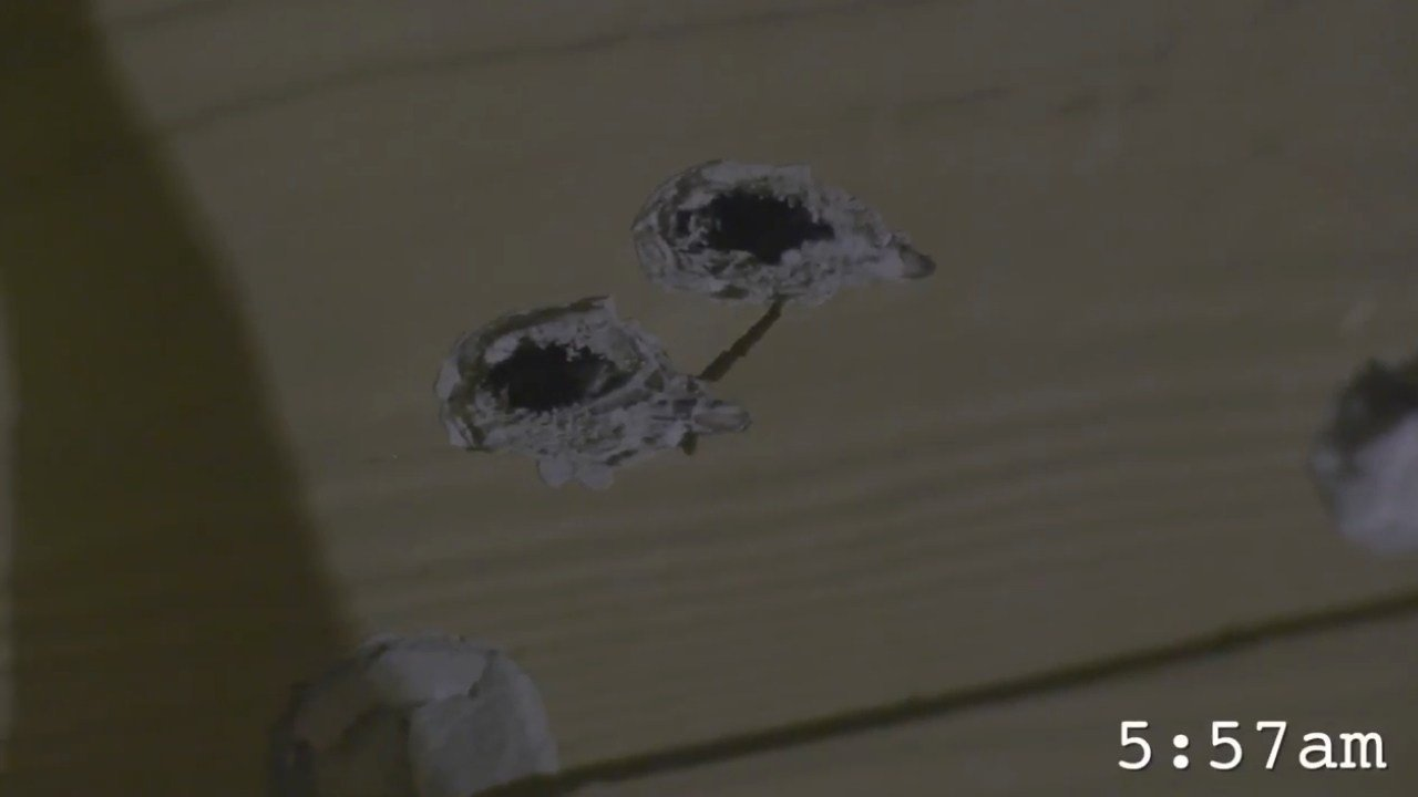 Bullet holes at Copper Canyon Apartments in Douglas County. (Youtube)