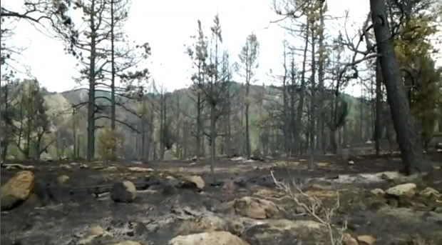 What's left of Russ Iverson's property in Teller County shocked him, he thought there would be a chance the flames missed his lot