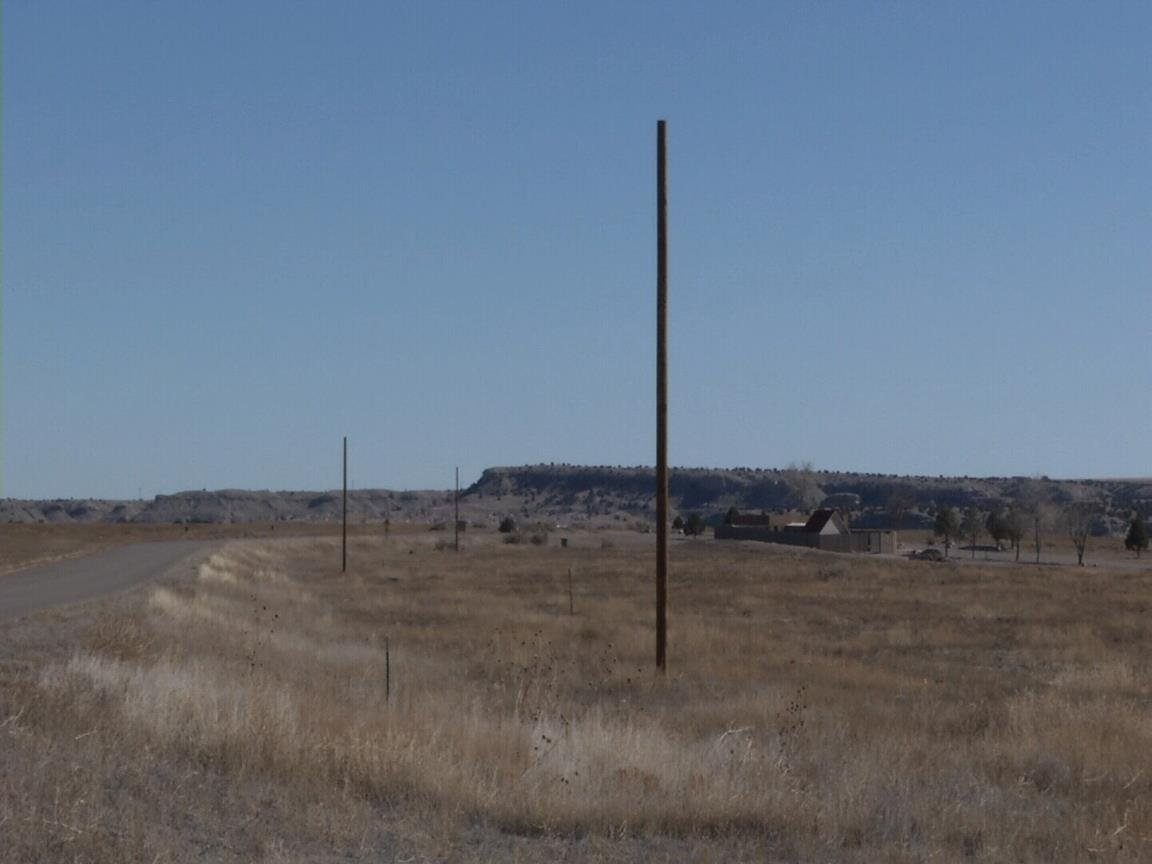 Old telephone poles are installed at Lake Pueblo State Park to help birds of prey hunt prairie dogs