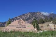 First hike day offers guided hikes at Colorado State Parks on New Years Day